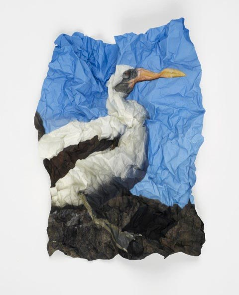 Marcus Coates, Ritual for Reconciliation: Nazca Booby (Sula Granti) Galapagos Islands, Ecuador, pigment on Hahnemuhle 100% α-cellulose, laid finished rice paper, 60 x 48 x 9cm, edition 1 of 3, 2013. New work kindly donated by the artist and Kate MacGarry, London.