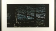 Willie Doherty, Buried, 2009, inkjet print. Image courtesy the artist and Matts Gallery, London