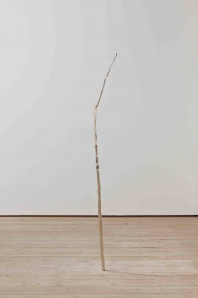 Birch in Space, 2010, bronze, 168 x 3 x 3cm, © the artist