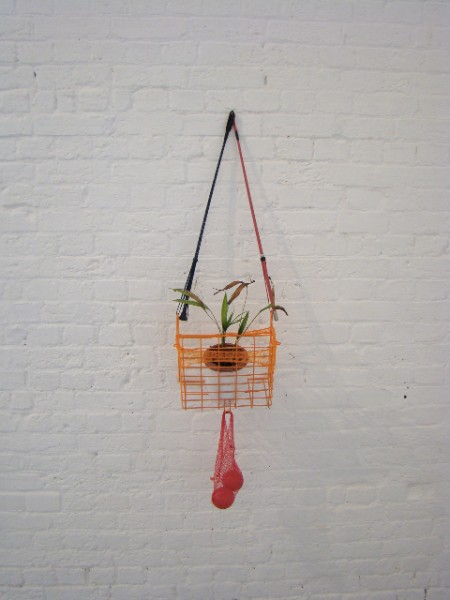 Restricted Growth, 2008, 2 x riding crops, plant, plastic balls, net, bicycle basket and ceramic vase, 42 x 85 x 20cm, © the artist