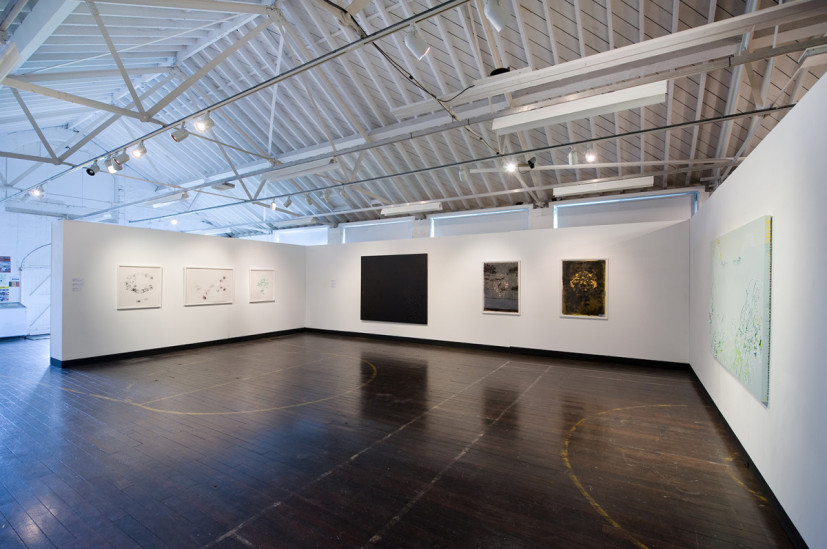 Mute Strength, installation view at Berwick Gymnasium Gallery, Berwick-Upon-Tweed, 11 June – 31 July 2011. Image courtesy the artist, © the artist