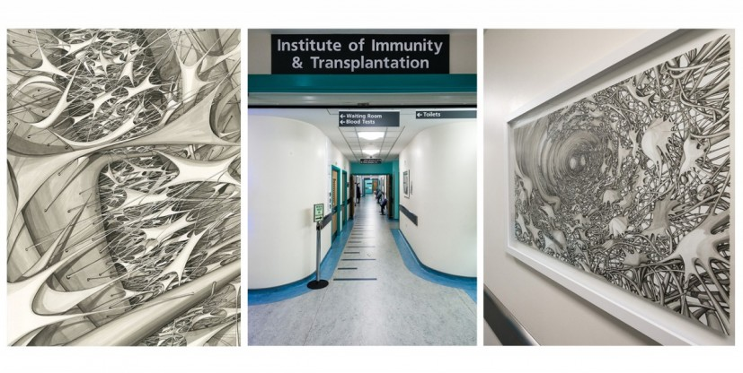 left- right; Stem 003, entrance to the Institute of Immunity & Transplantation, Stem 002; both works Copic marker pen drawing, 56 x 76cm, 2013, Contemporary Art Society Consultancy Commission for the Royal Free Hospital, London, © The Royal Free Hospital, Photo: Joe Plommer, © the artist