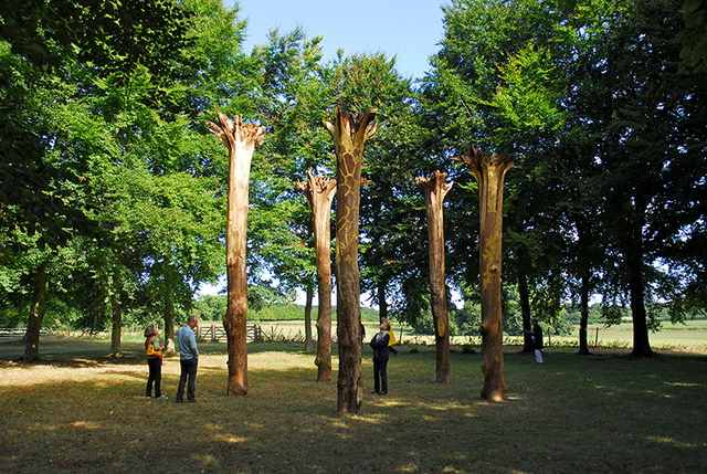 Resuscitare, Elpida Hadzi-Vasileva, Mottisfont, Romsey, Hampshire, England; 5 oak trees gilded with 23.5 ct gold leaf, and 34 beech trees gilded with Dutch metal,  3400 cm x 3400 cm x 800 cm, 2013. Photo: Bernard G Mills; Courtesy: the artist, © the artist