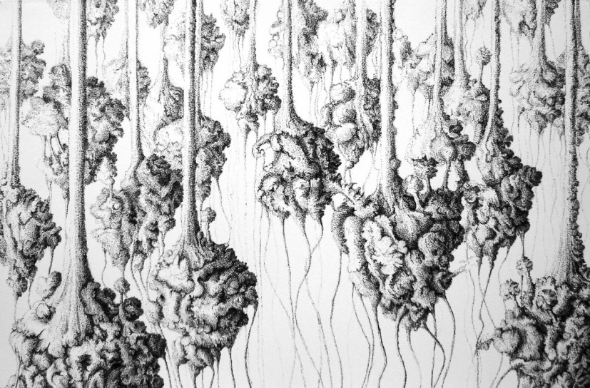 Droplets, pen and ink drawing, 40 x 60cm, 2005, © Ruth Uglow, photo courtesy the artist