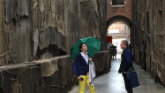 International Patrons Trip to the Venice Biennale, 2015
