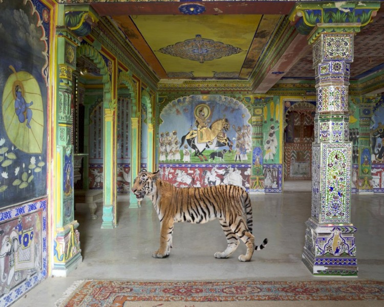 Arjuna's Path, Junha Mahal, Dungarpur, from the series 'India Song', 2008-2014. Image courtesy the artist, © the artist