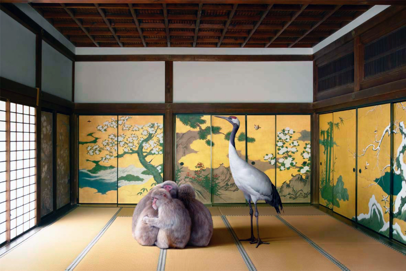 Guardian of the Temple, Nazen-ji Temple, Kyoto, from the 'Monogatari' series, 2015. Image courtesy the artist, © the artist