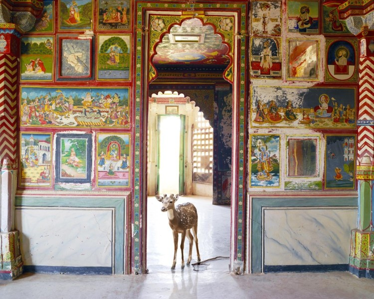 Sita's Wish, Juna Mahal, Dungarprur, from the series 'India Song', 2008-2014. Image courtesy the artist, © the artist