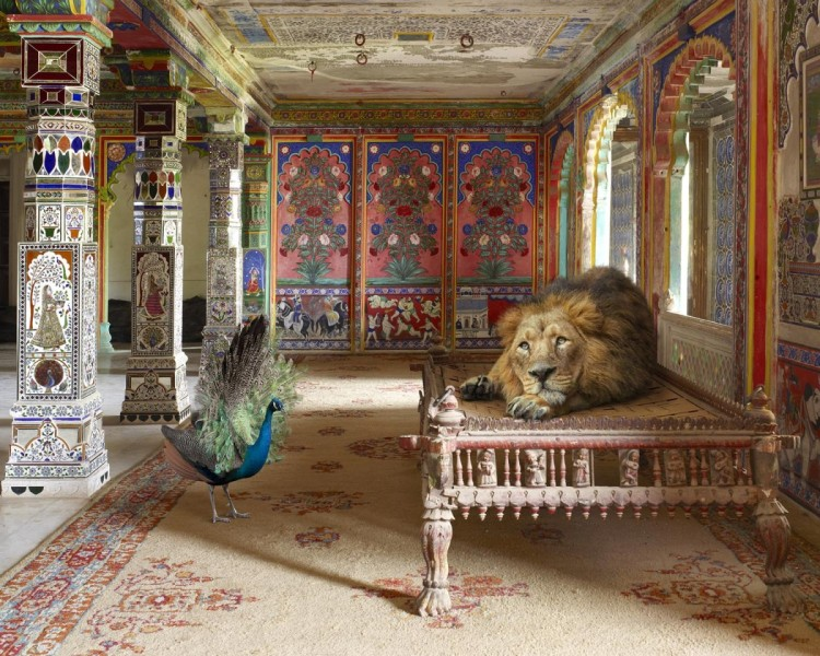 The Lovesick Prince, Aam Khas, Junha Mahal, Dungarpur Palace, from the series 'India Song', 2008-2014. Image courtesy the artist, © the artist