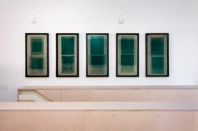 Tom Lovelace, Forms in Green, Hackney No.03, No.05, No.07, No.09, No.04. All works 2012, unique photogram, 100 x 50cm, courtesy the artist. Photo: Joe Plommer