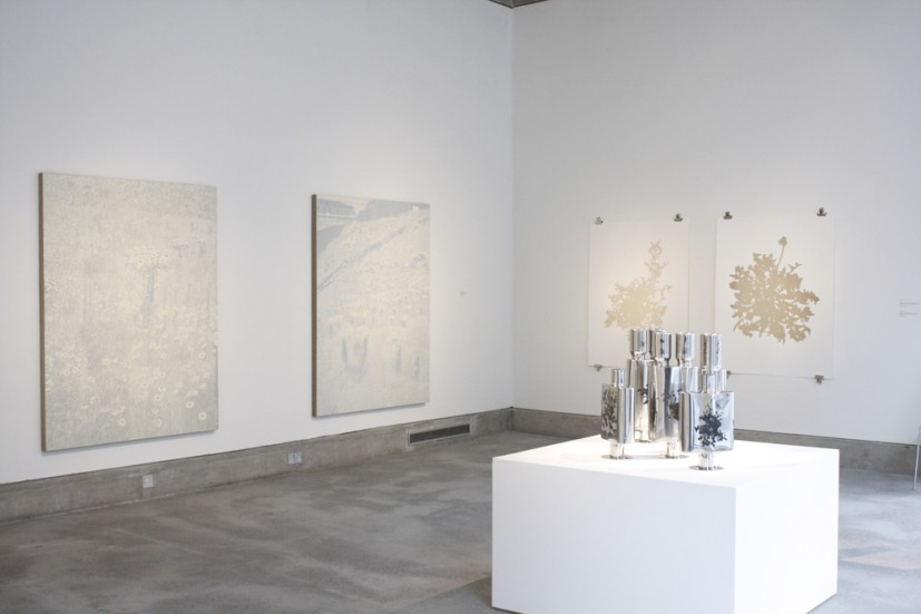 Soft Estate, installation view, 2013. The exhibition features new works by Edward Chell, John Darwell, Laura Oldfield Ford and George Shaw