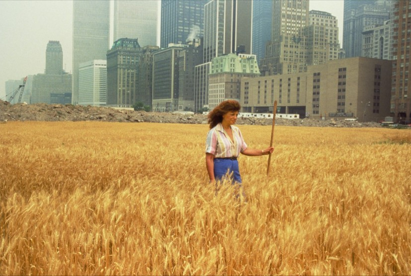 Agnes Denes, Wheatfield – A Confrontation: Battery Park Landfill, Downtown Manhattan – With Agnes Denes Standing in the Field, 1982 © Agnes Denes, courtesy Leslie Tonkonow Artworks + Projects, New York.