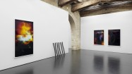 Installation view of the the show «Nature more» at CAPC, Bordeaux 2013 © the artist and Ancient&Modern