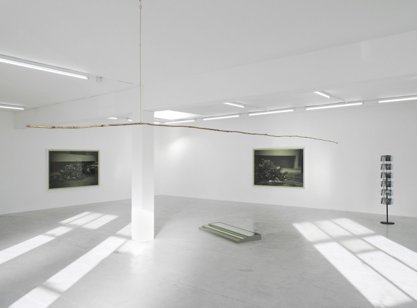 Becky Beasley, The Walk…in green, installation view, 2014. Image courtesy Laura Bartlett Gallery, London