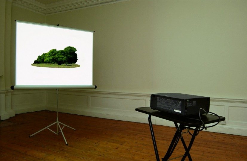 Everglade, 2003, installation with projection screen, projector, projector stand, DVD player. DV on DV: duration 10 minutes on continuous loop, video still. Commissioned by Film and Video Umbrella. Collection of Gloucester City Art Gallery. Image courtesy the artist, © the artist