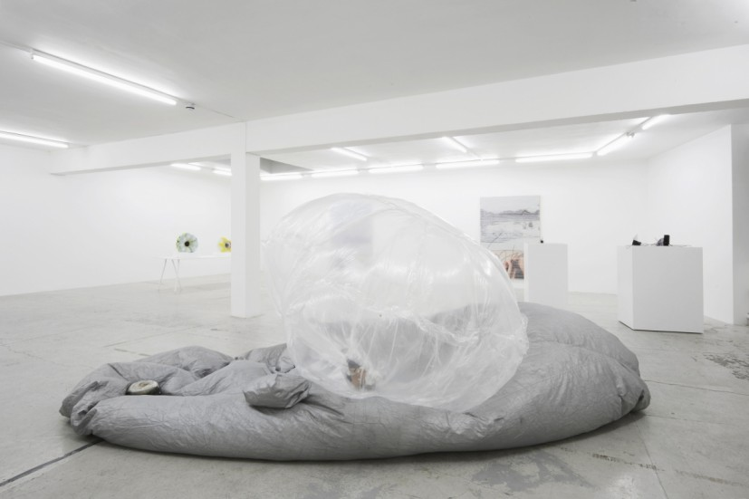 La Mer Insomniaque Installation view with Natalie Häusler, Eric Sidner, Margo Wolowiec, Laura Bartlett Gallery, London, 2015. © the artists; Courtesy Laura Bartlett Gallery, London. Photo: Andy Keate