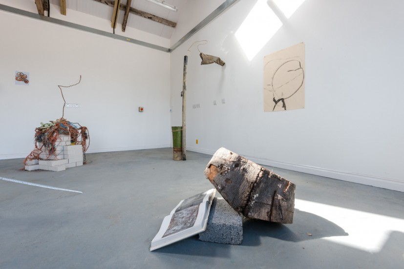 Aid & Abet, The Soft Landscape, installation view, from GRAVEL: notes from the other side of the fence, 28-30 May 2015. Photo: Joe Plommer