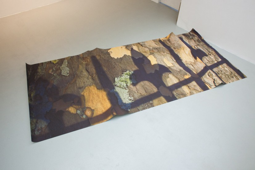 Alternative Therapy X London Plane, laser print on paper, wood, dimensions variable, edition of 2 + 1AP, 2012. Image courtesy Carl Freedman Gallery, London and the artist, © the artist