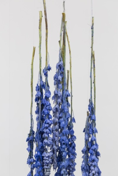 Detail. Miriam Austin, Prosthetics for Hostile Contexts (Delphinium), 2015.Dimensions variable. Platinum silicone, dried Delphinium, silk thread. Courtesy Oskar Proctor