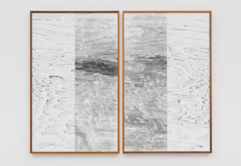 Lisa Oppenheim, Landscape Portrait (Cherry and Walnut) (Version II), 2015, Two tiled unique black and white silver gelatin photographs with unique frames, Diptych: each part: 98 x 64.45 cm. Courtesy the artist and The Approach, London.