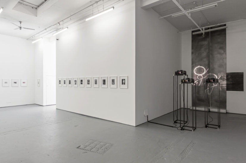 Double Take, installation view, Drawing Room, 2016. Courtesy Drawing Room, photo: Lucy Dawkins.