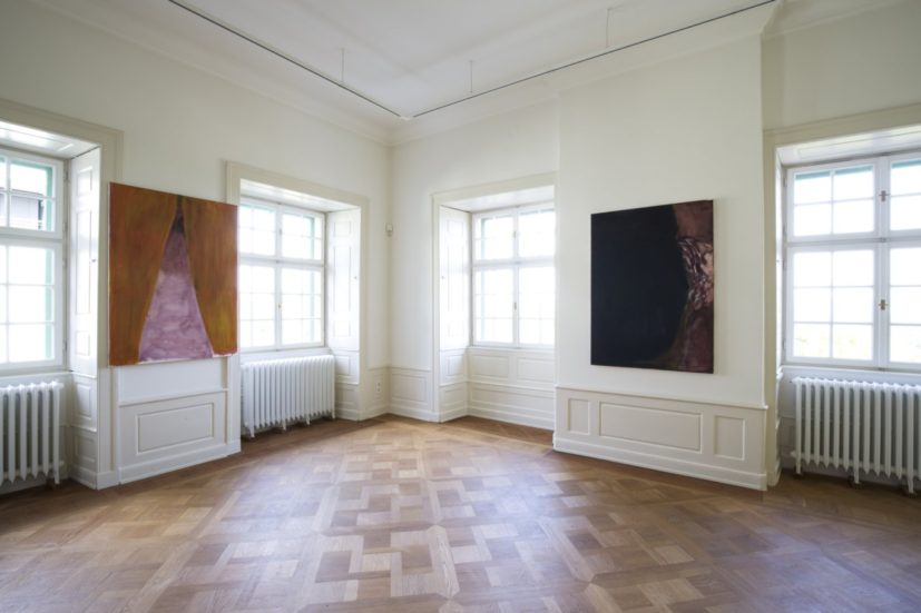 Rosalind Nashashibi, installation view, Palais Bellevue, Kassel, documenta 14, photo: Daniel Wimmer