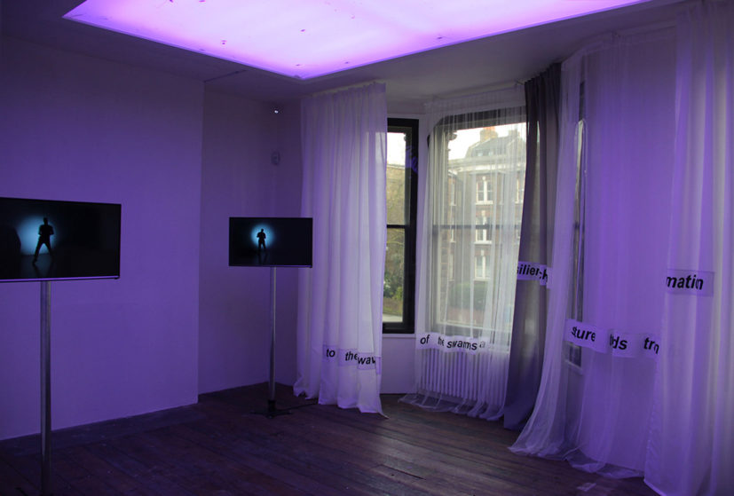 Installation View of Paul Maheke, 'I Lost Track of the Swarm', 2016, South London Gallery, London, Great Britain.