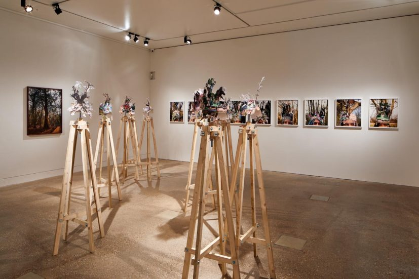 Installation view of Gayle Chong Kwan, The Peoples Forest, 2018. Photo: Andy Stagg
