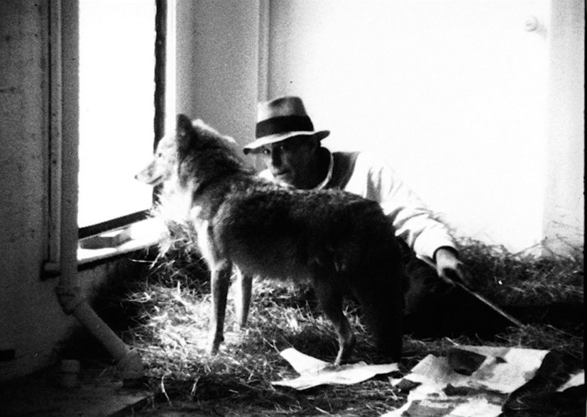 Joseph Beuys, I Like America and America Likes Me, 1974. Copyright 1974 by Helmut Wietz