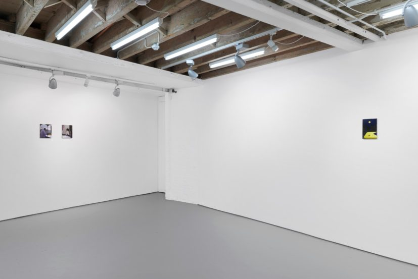 Installation view of 'Gareth Cadwallader: Half-Lowered Eyelids' at Josh Lilley Gallery. Photographer: Benjamin Westoby