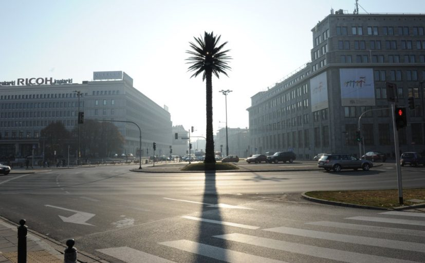 Joanna Rajkowska, , Greetings from Jerusalem Avenue, 2002. Permanent installation: an artificial palm tree placed at the junction of Aleje Jerozolimskie (Jerusalem Avenue) and Nowy Świat (New World), Warsaw, Poland