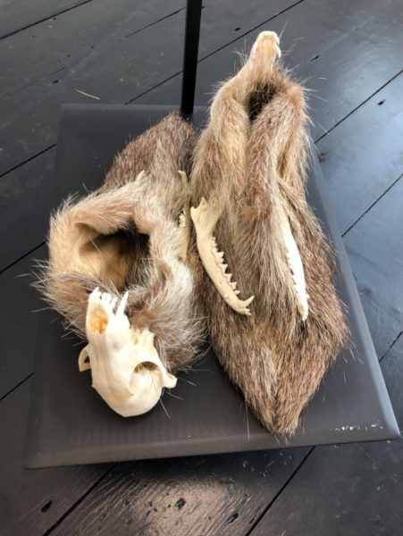 Joanna Rajkowska, Shoes with Fox's Skull, 2019. Fox skull, animal fur, leather
