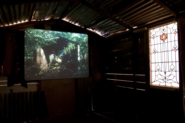 Ben Rivers, Origin of the Species, installation view, 2010. Photo: Andy Keate