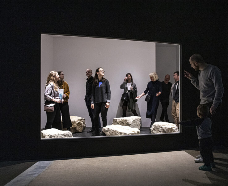 Installation view of Resurrecting the Sublime at Apocalypse - End without End, Natural History Museum Bern, 2020. Orbexilum stipulatum (smell diffusion hood, limestone boulder, documentary film, animation) Photograph © NMBE Flueckinger