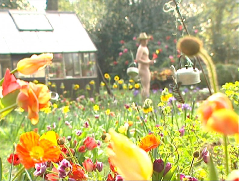 Colours and Sounds in Ivan Morison's Garden, Spring 2002 (still)