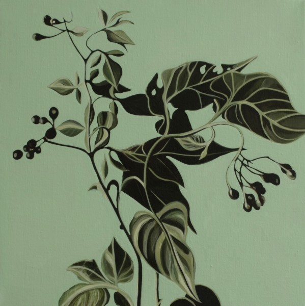 Woody Nightshade, oil on canvas, 30 x 35cm, 2013, © the artist