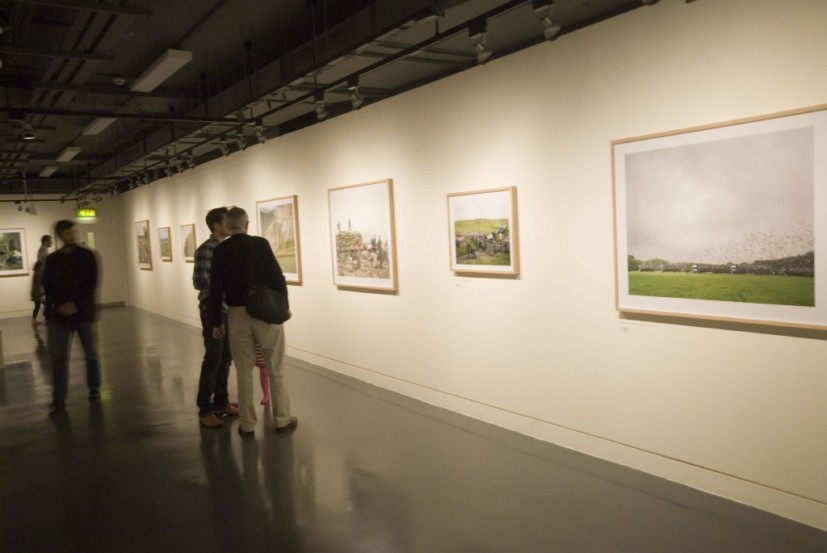 In Focus, installation view