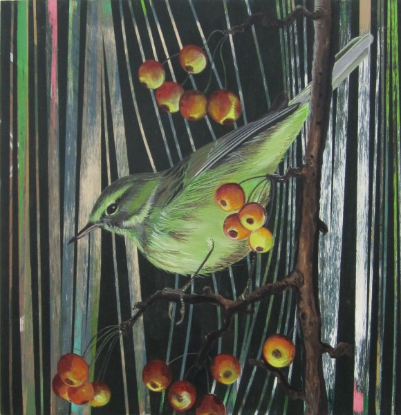 Jason Middlebrook, The Palm Warbler