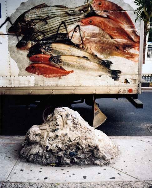 Kevin Landers, Untitled (Cement rock and fish truck)