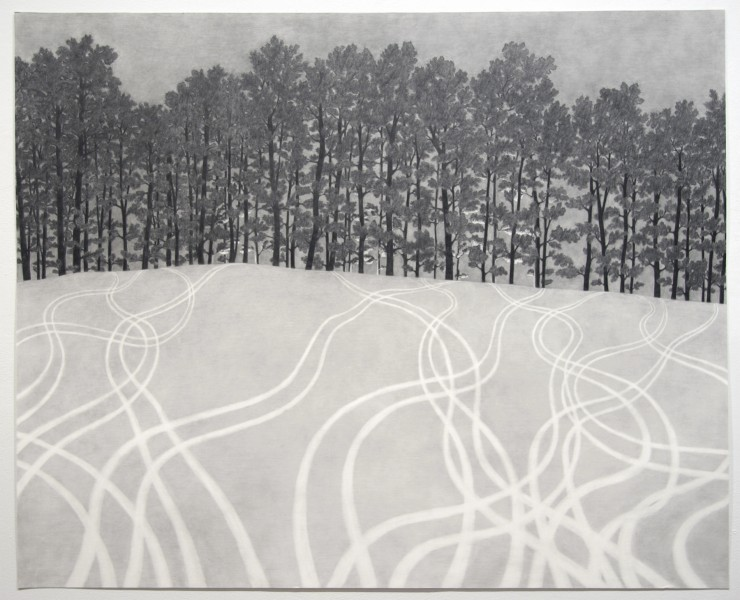 Michael Schall, Snow Tracks