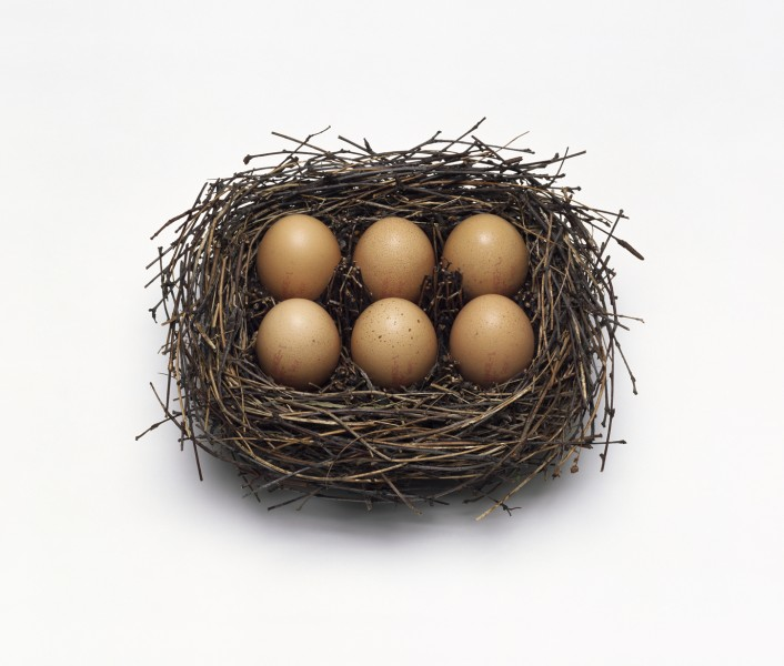 Nancy Fouts, Birds Nest with Six Eggs