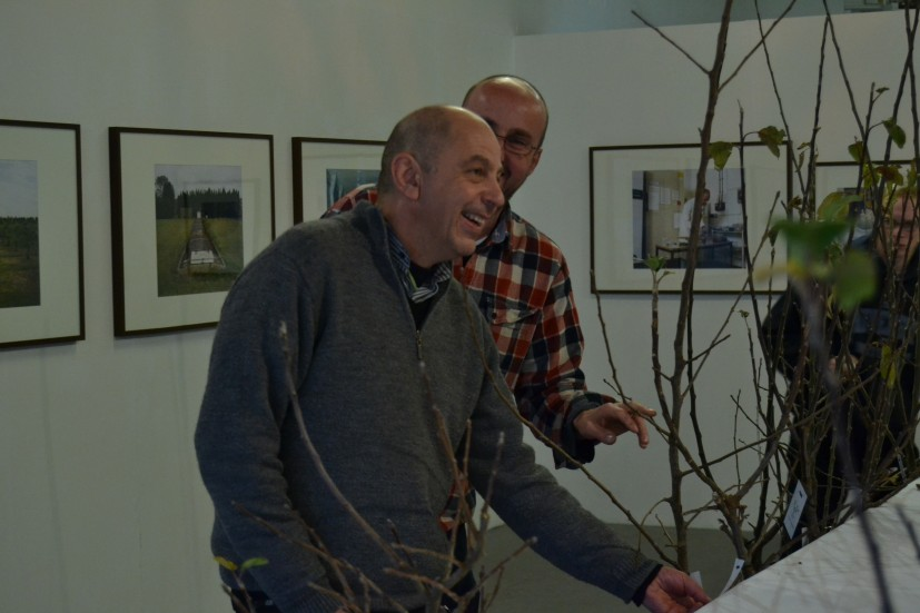 Neville Gabie with apple trees at the Orchard exhibition