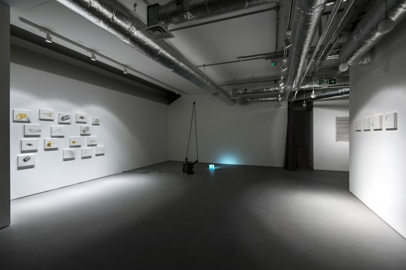 Bore Song, 2011, and related drawings, 2009-2012. Installation view at the Contemporary Art Society (13 February - 1 March 2013). Acquired by the Contemporary Art Society for Cheltenham Art Gallery & Museum.